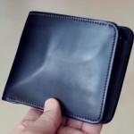 育てる系財布WILD SWANSの2ヶ月後