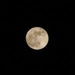 スーパームーン翌晩の満月