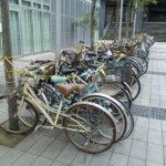 捨てられゆく哀れな自転車の山。