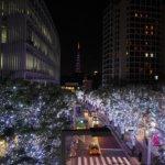 2012 六本木ヒルズ ケヤキ坂 Xmasイルミネーション。