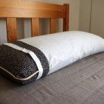 日本が生んだそば殻ジャンボ枕は世界でガチで戦える枕になりうると激しく予想しています!