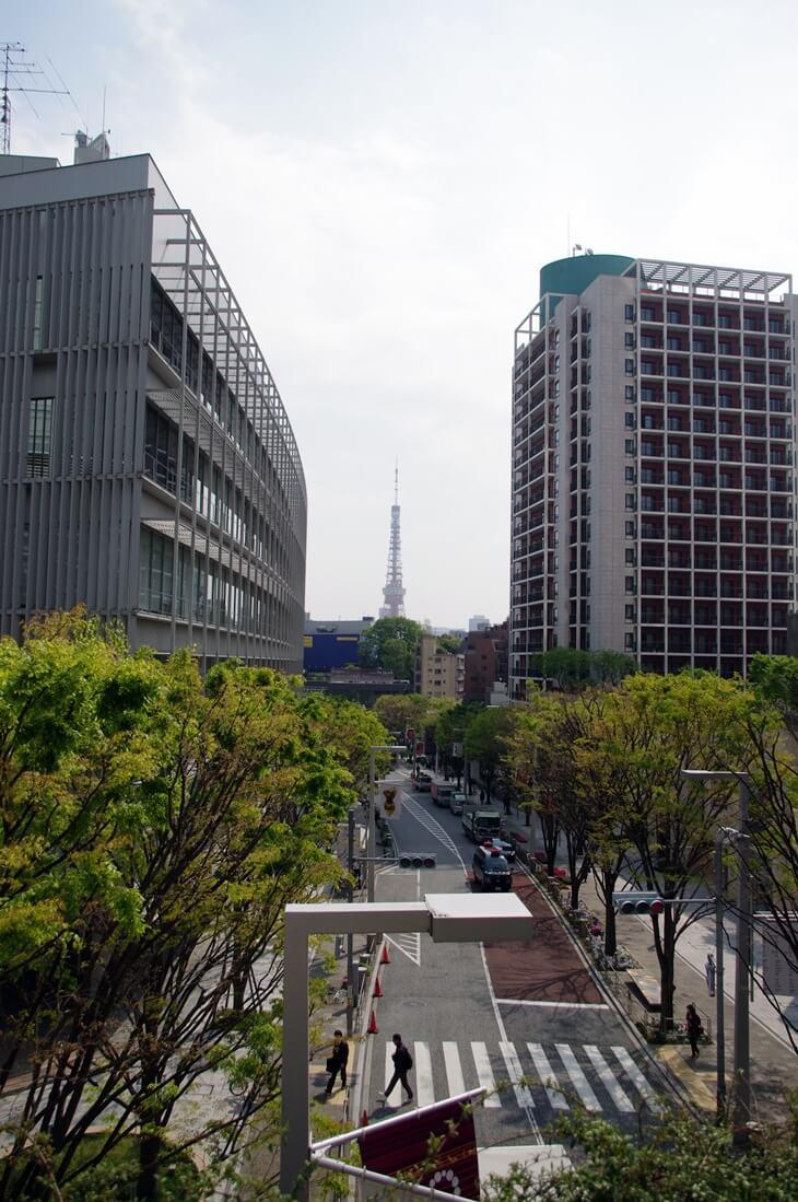 ヒルズから眺める東京タワー