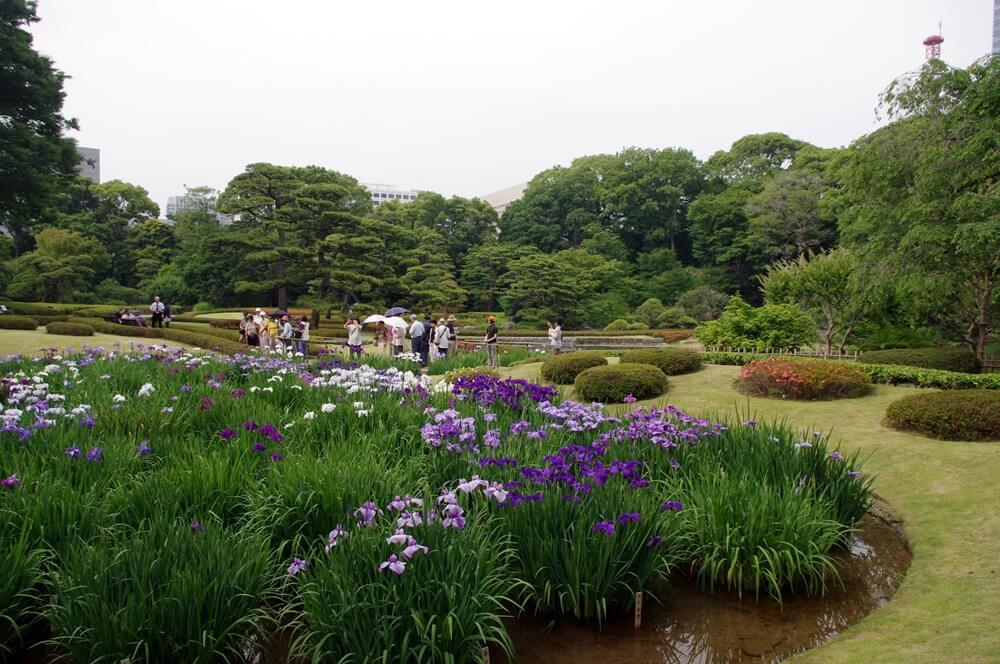 皇居 江戸城 二の丸庭園