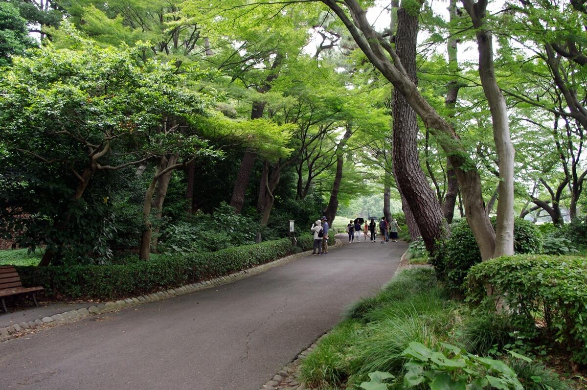 江戸城本丸御殿松の大廊下跡 (2)