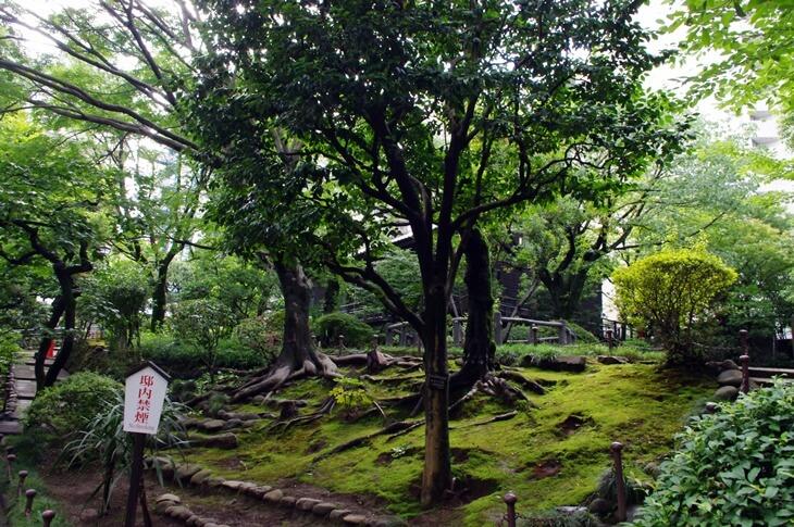 旧乃木邸 裏庭