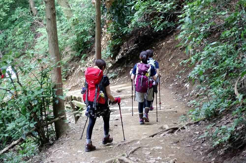 高尾山 ヤマガール  (5)
