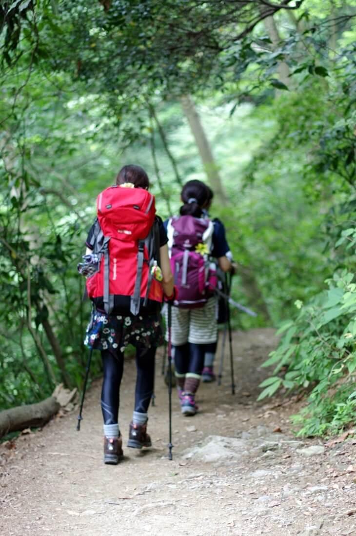 高尾山 ヤマガール  (6)