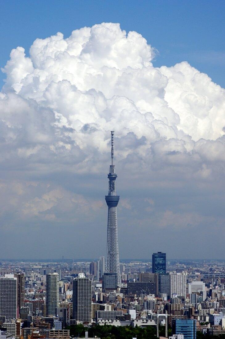 都内屈指の絶景ポイント:東雲のタワーマンション180mから見る東京スカイツリー  tokyo sky tree  from shinonome  tower manshion (3)