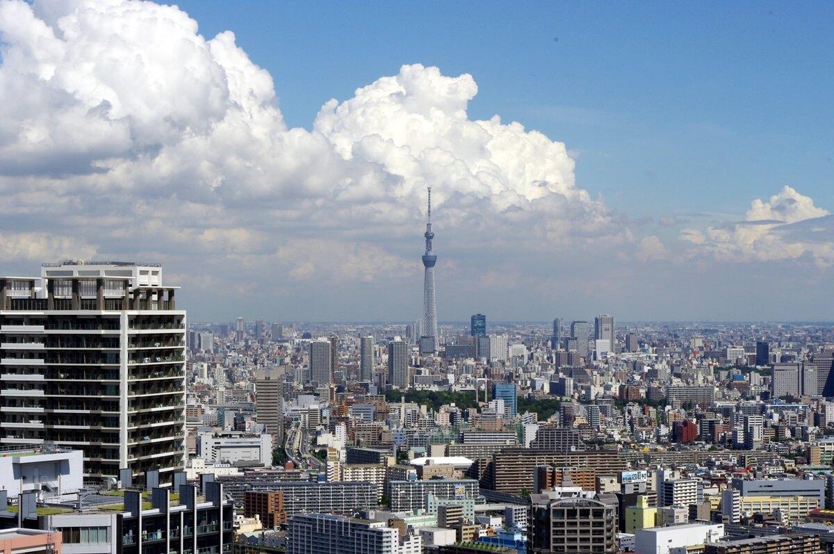 都内屈指の絶景ポイント:東雲のタワーマンション180mから見る東京スカイツリー  tokyo sky tree  from shinonome  tower manshion (8)