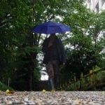 雨の日はユニクロのパンツとル・シャモーのレインブーツがマッチするデス。