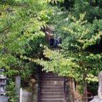 歴史探訪:源頼朝の墓所