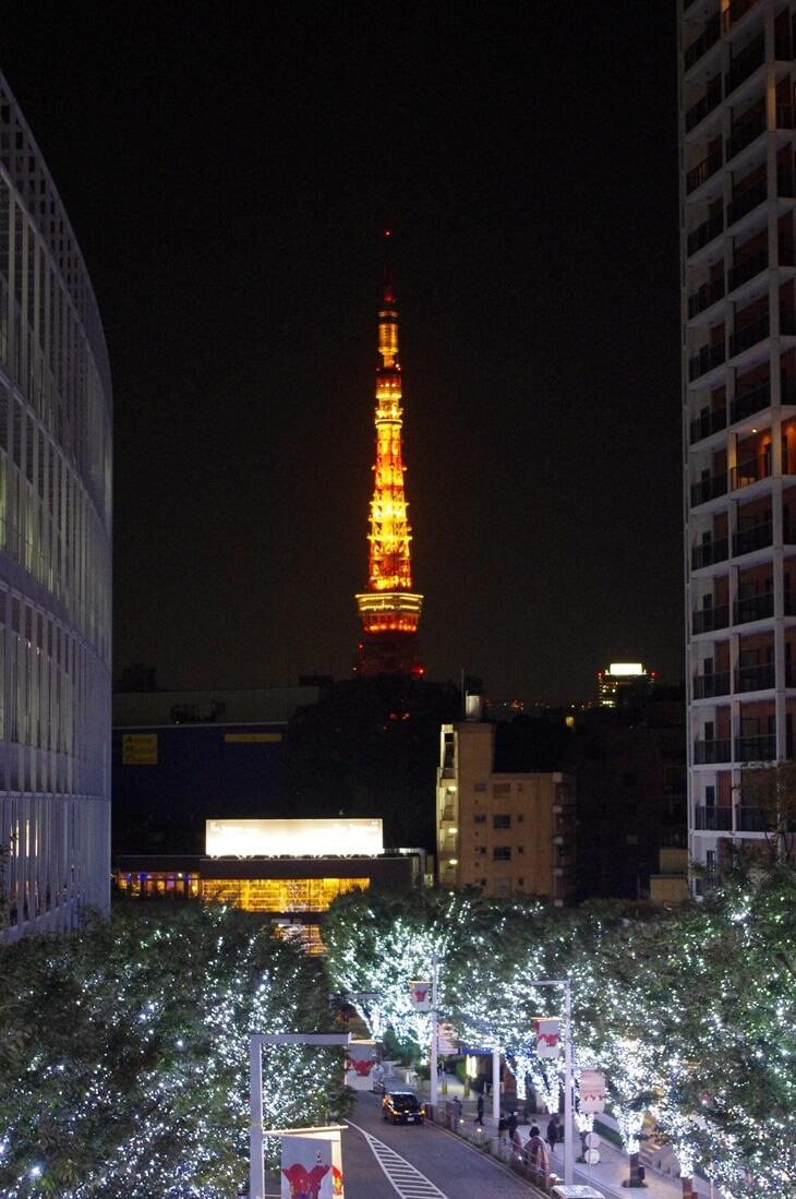 2013 六本木ヒルズ ケヤギ坂イルミネーション 東京タワー