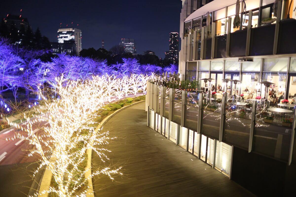 東京ミッドタウン イルミネーション (5)