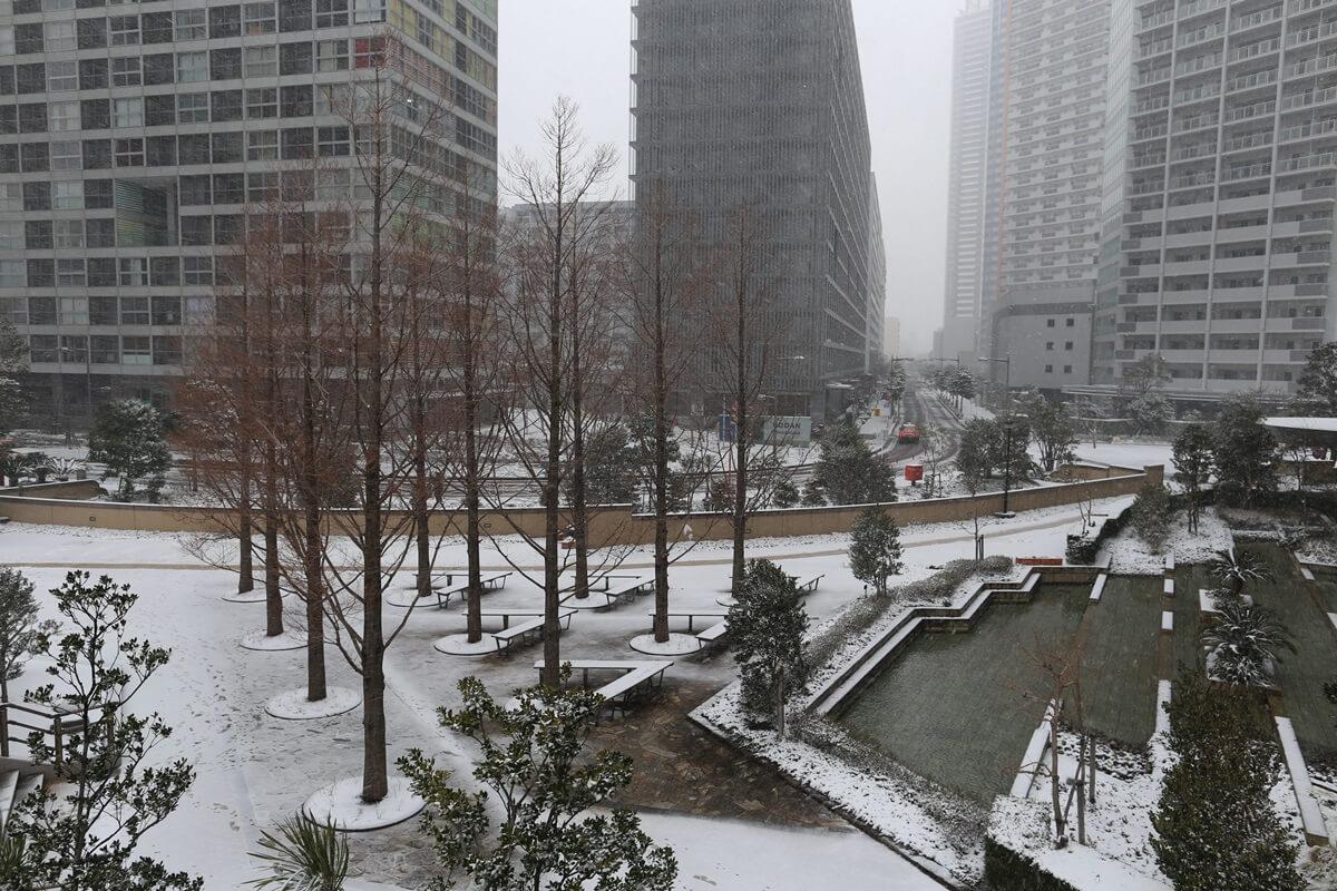shihohome_snow (12)