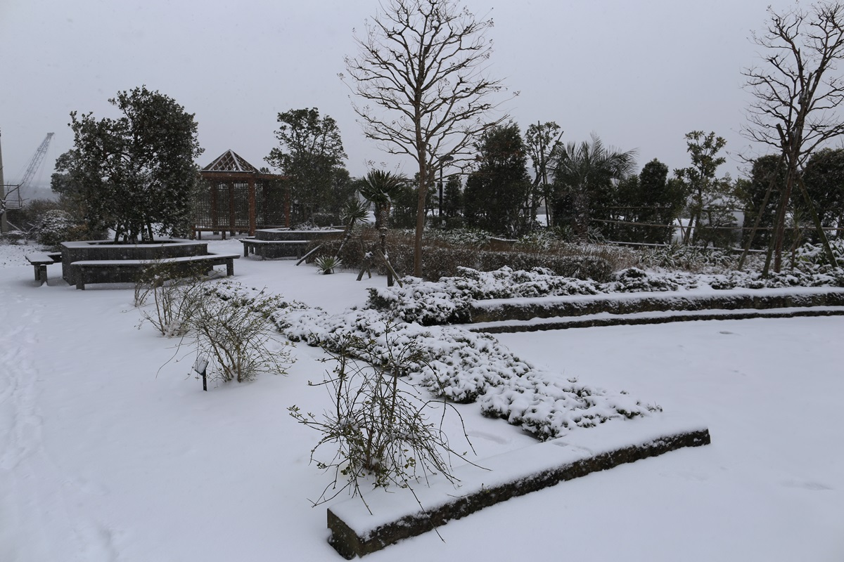 shihohome_snow (13)
