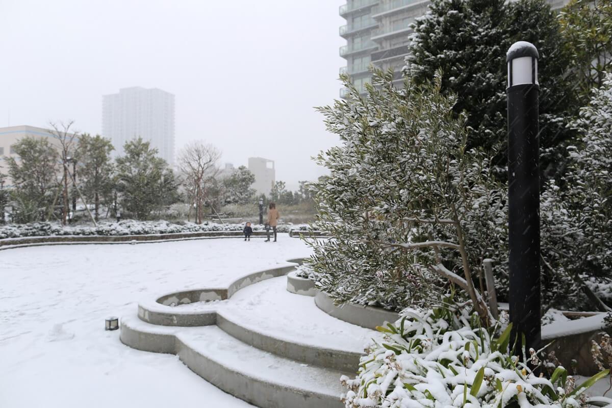 shihohome_snow (14)