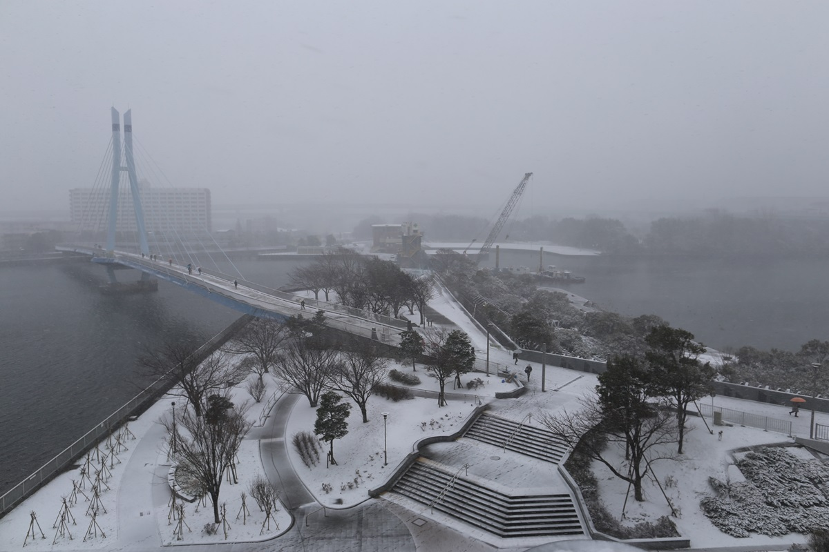 shihohome_snow (3)