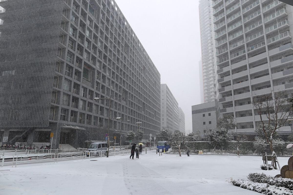 shihohome_snow (7)