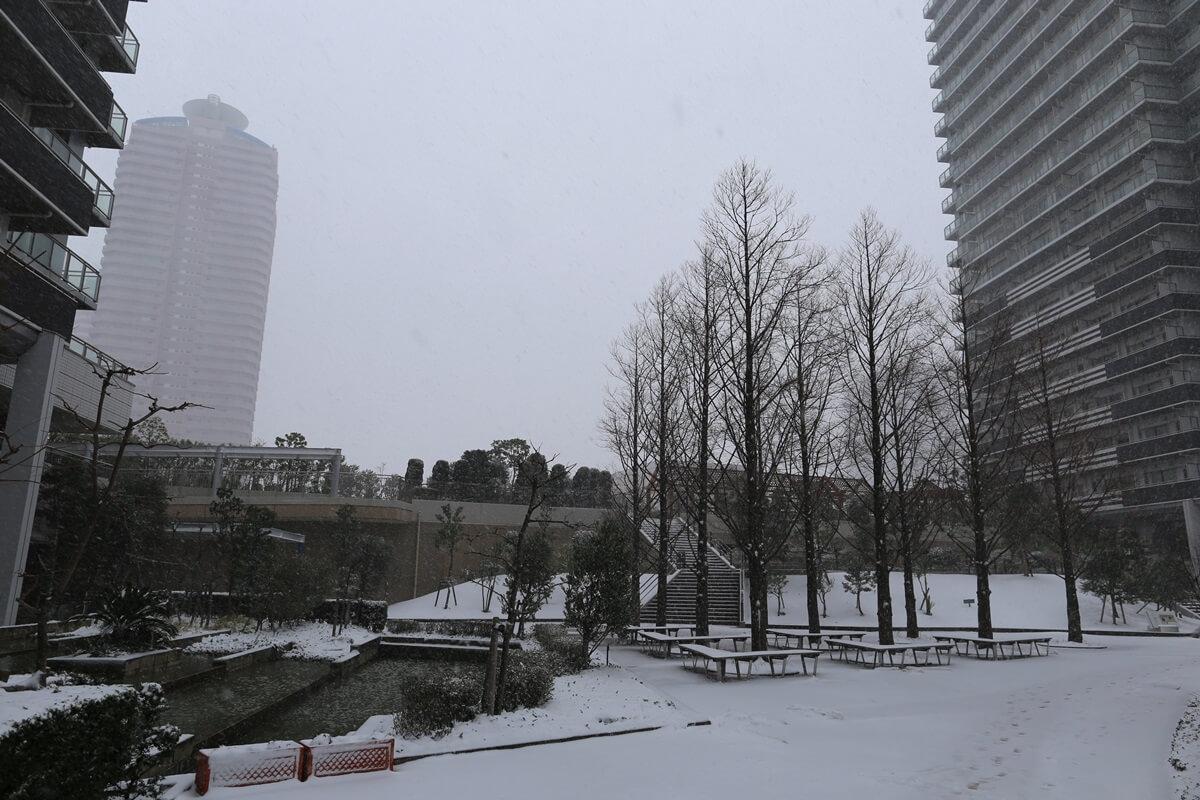 shihohome_snow (8)