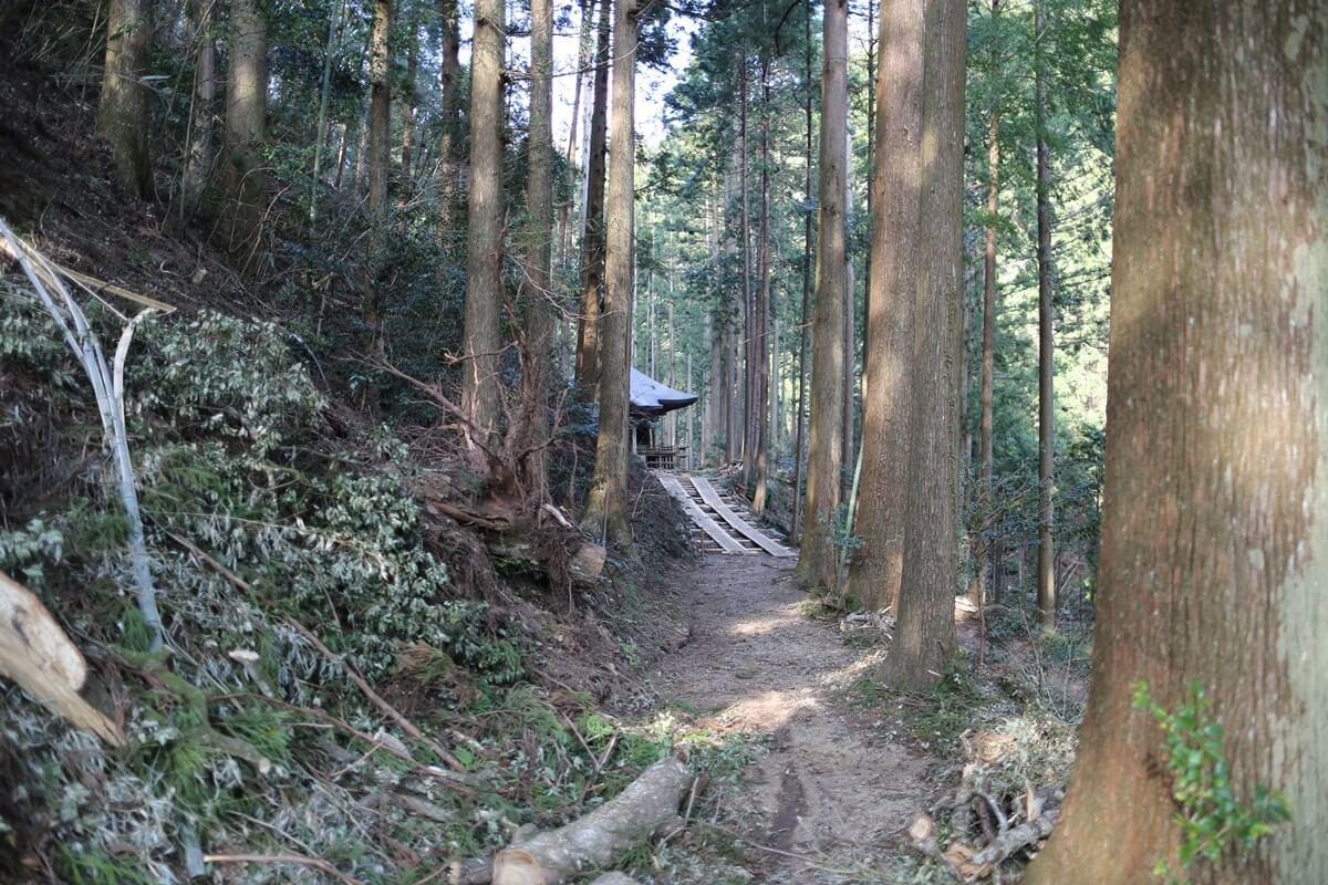 賀蘇山神社 (11)