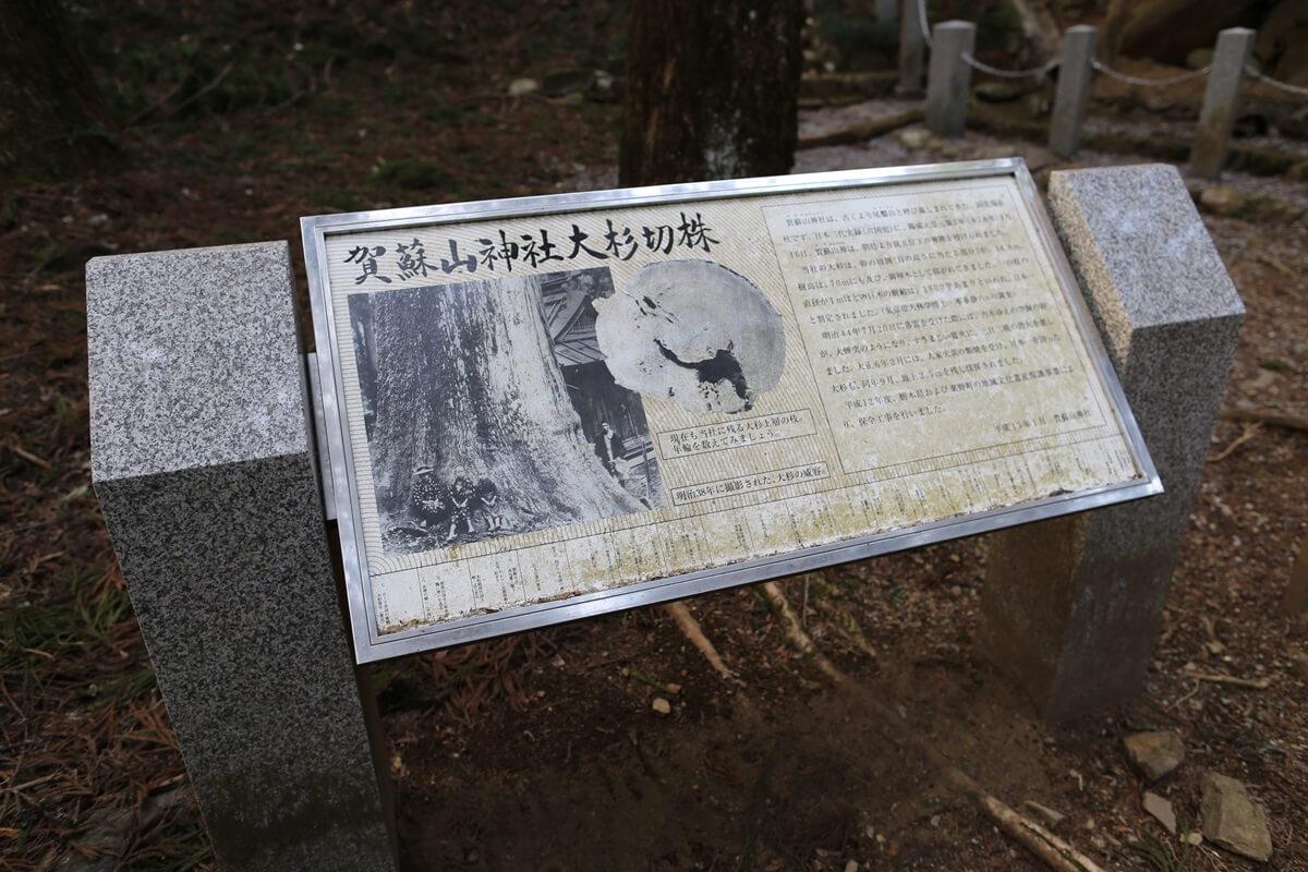 賀蘇山神社 (14)