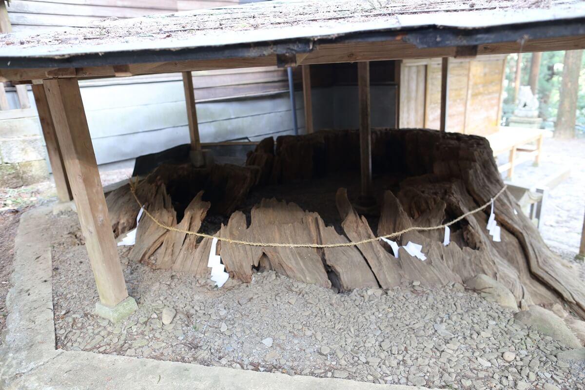 賀蘇山神社 (15)