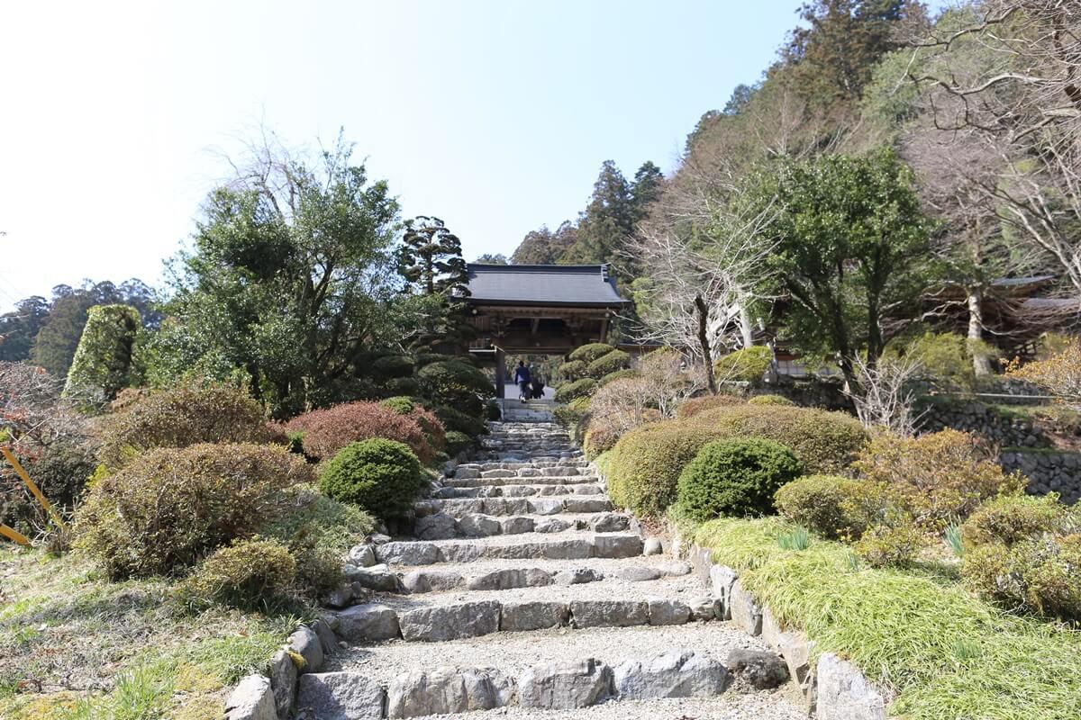 賀蘇山神社 神門(3)
