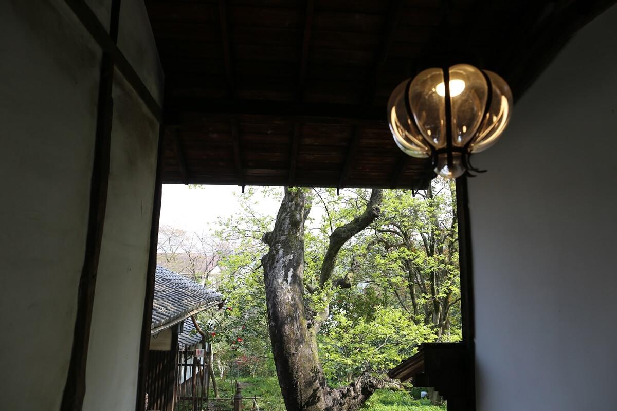 白洲次郎 武相荘 buaisou_jiro_shirasu (60)