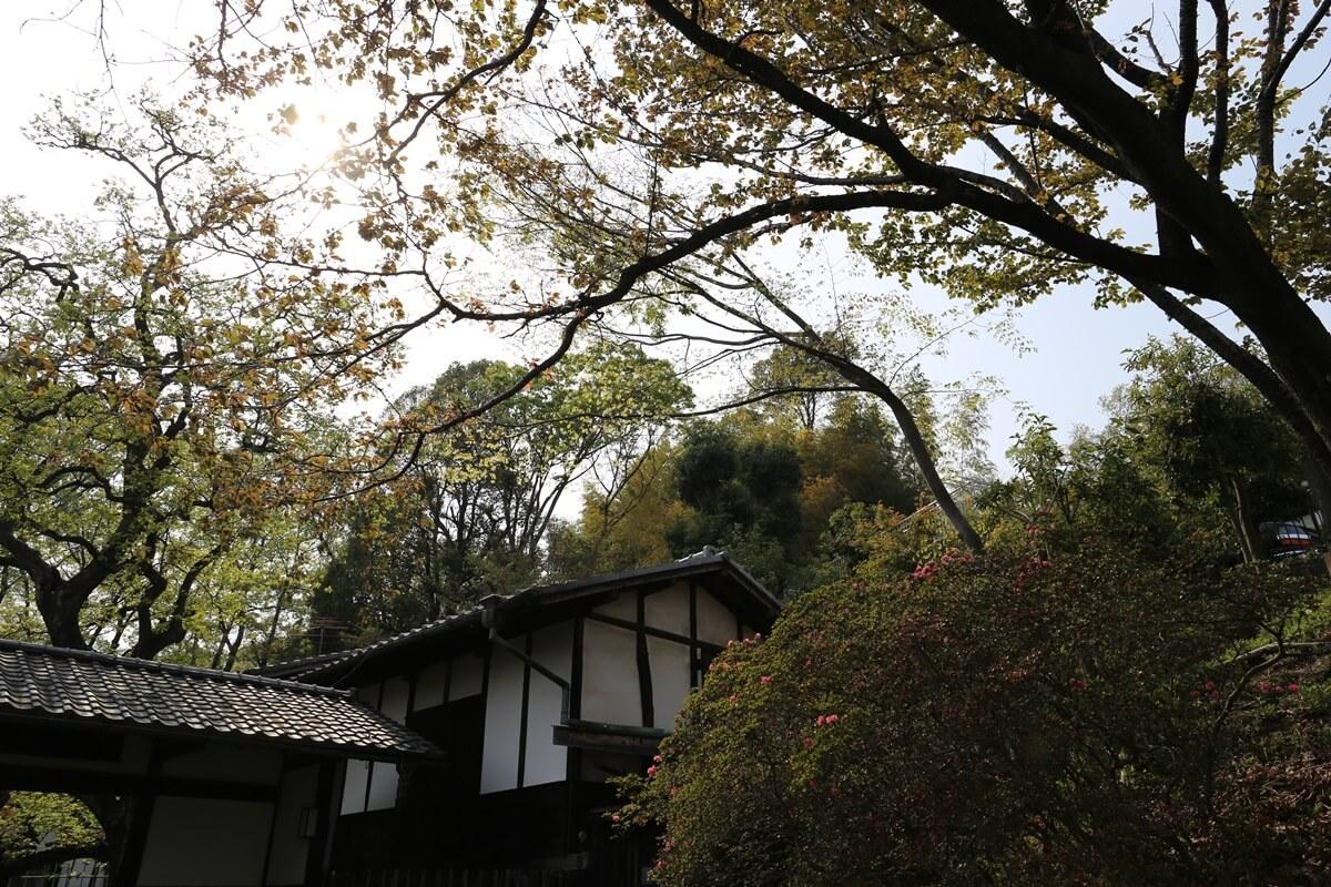 白洲次郎 武相荘 buaisou_jiro_shirasu (66)