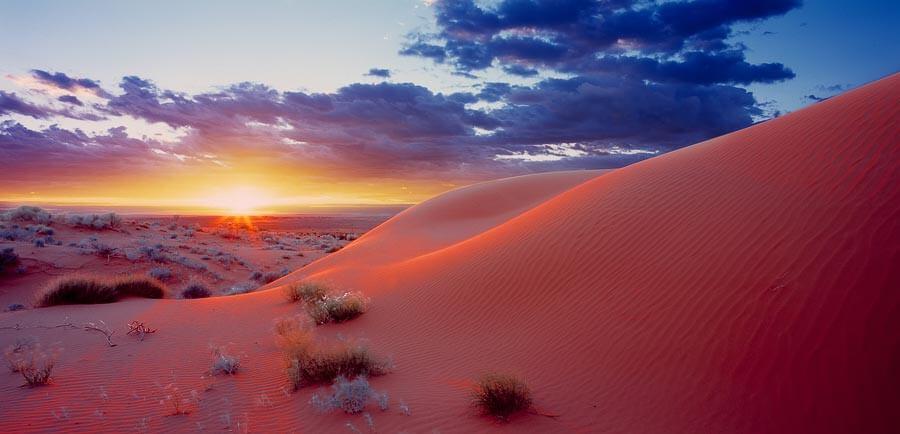 オーストラリア シンプソン砂漠