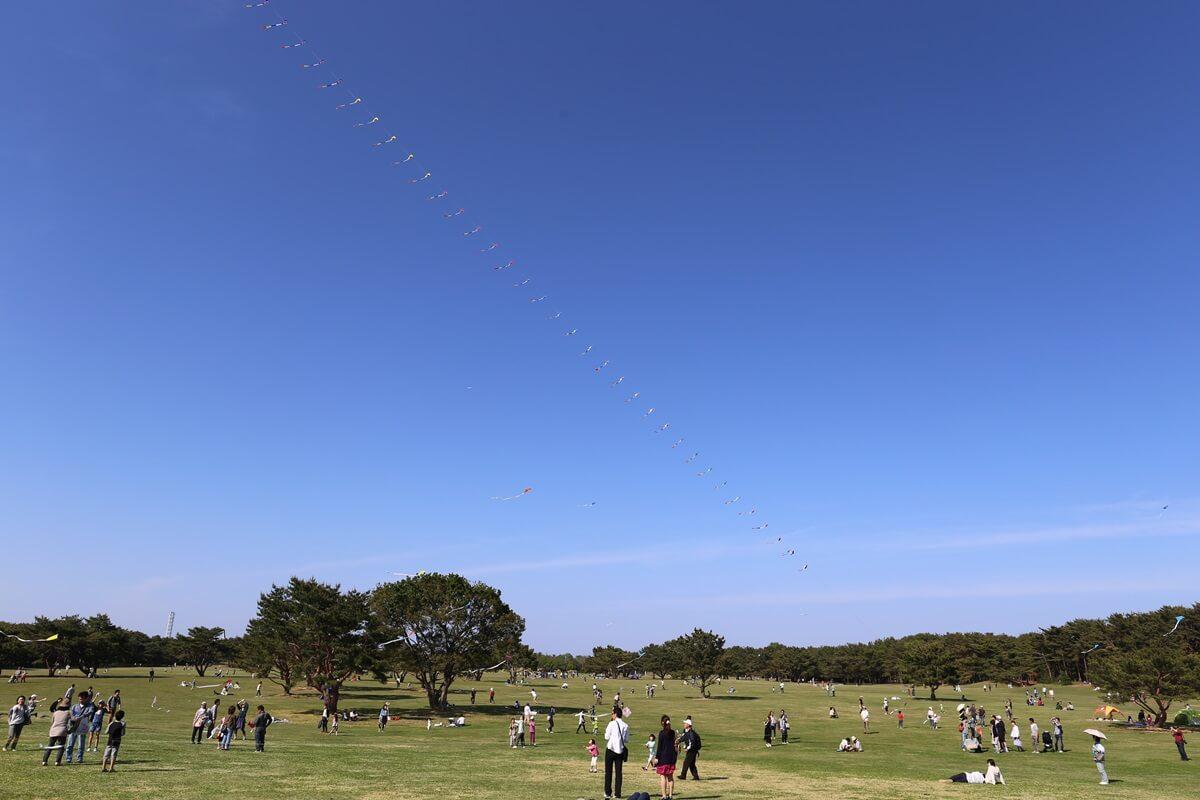 凧上がる国営ひたち海浜公園 (1)