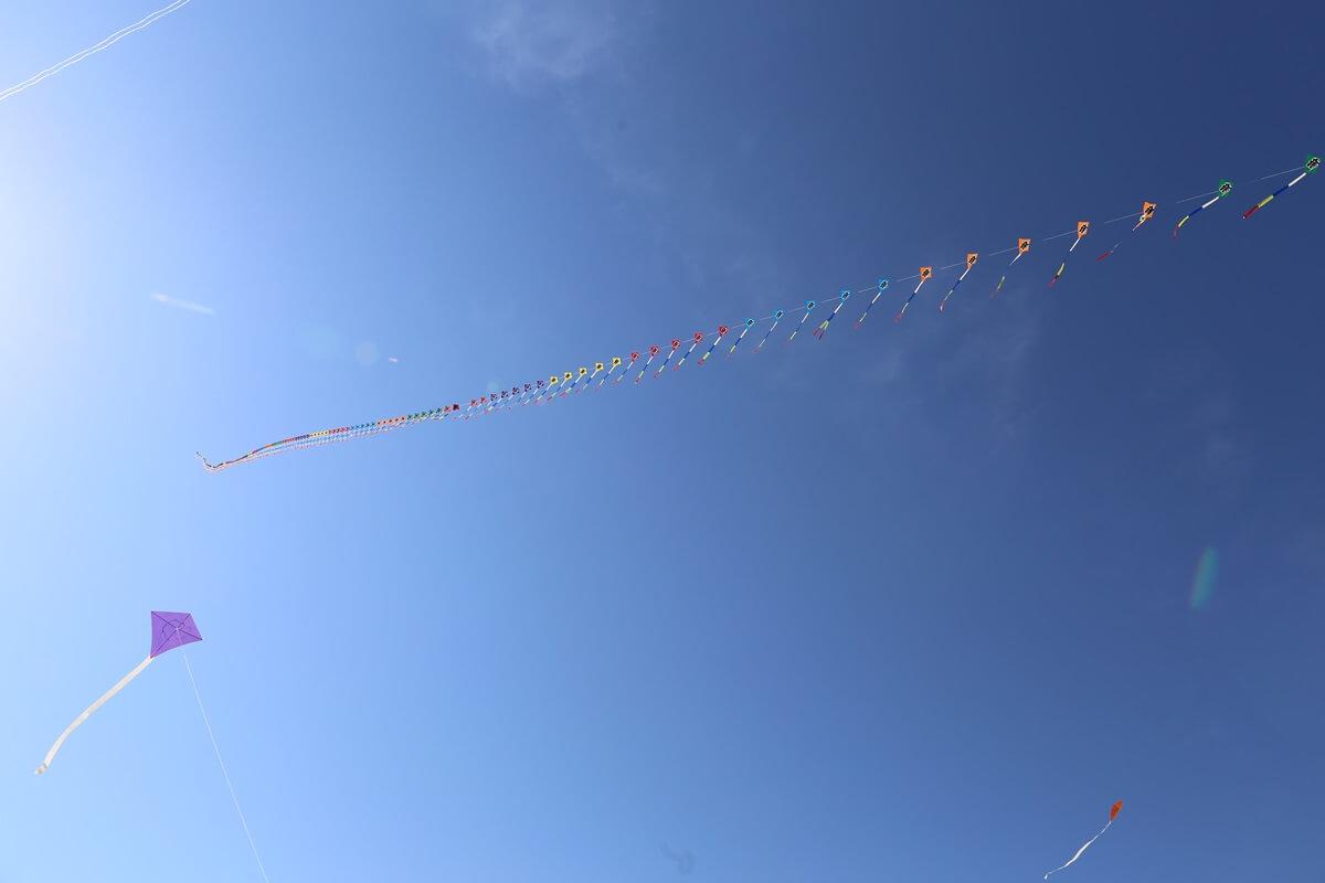 凧上がる国営ひたち海浜公園 (2)