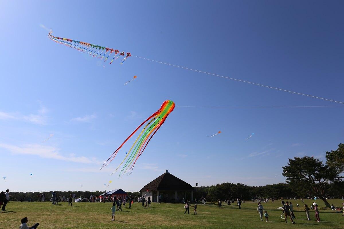 凧上がる国営ひたち海浜公園 (3)