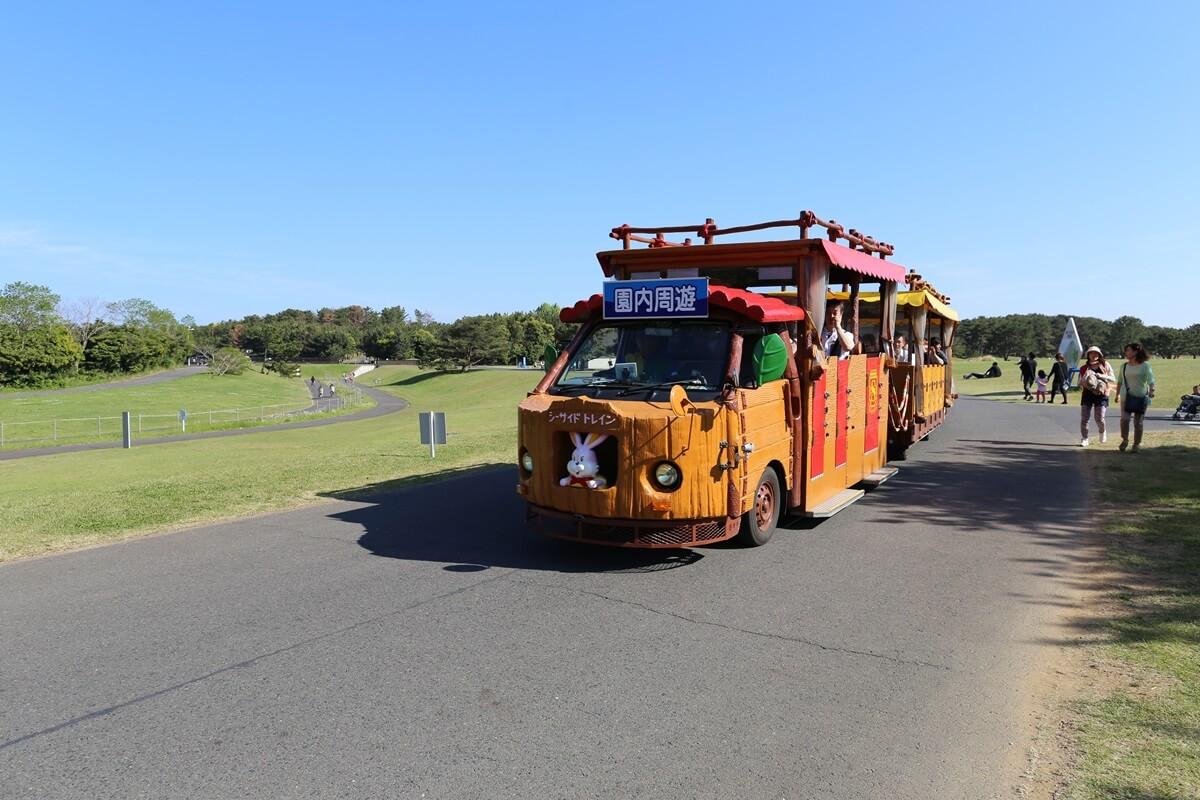 巡回バス 国営ひたち海浜公園 (4)