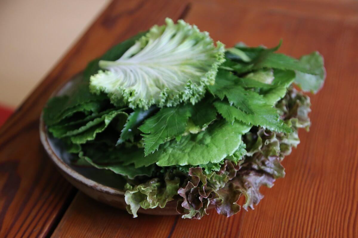 仁寺洞 茶イヤギ 竹筒ご飯定食の店 chaiyagi (1)