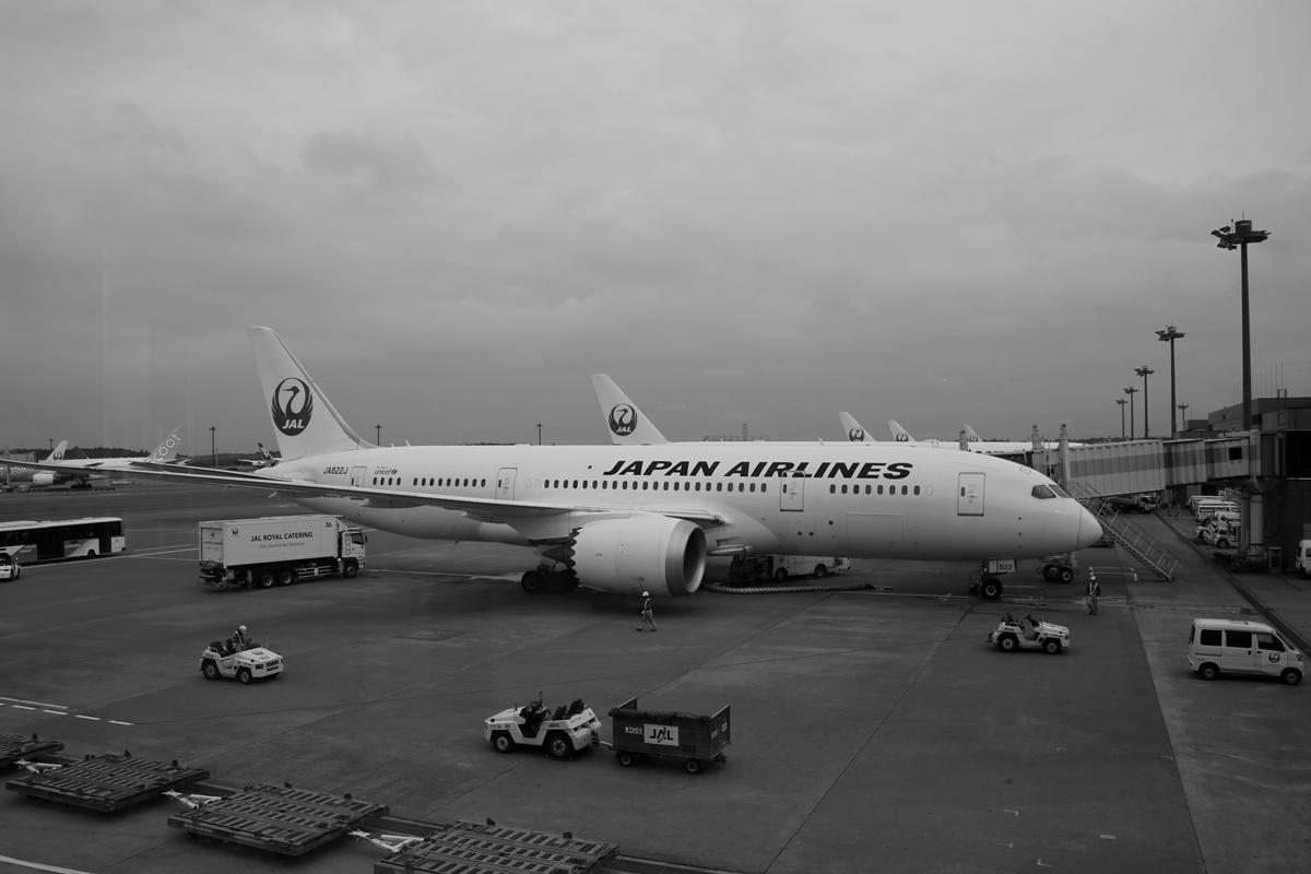 JAL 日本航空 成田国際空港 narita international airport (2)