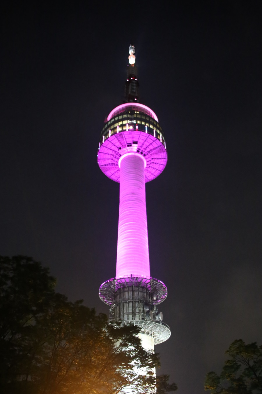 ピンク色 Nソウルタワー 南山 N-Seoul-tower (15)