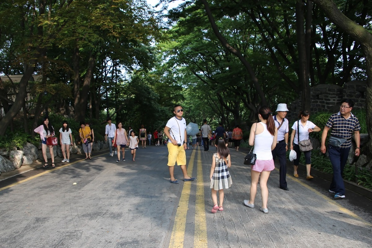 Nソウルタワー真下 南山 Namsan and N-Seoul-tower (6)