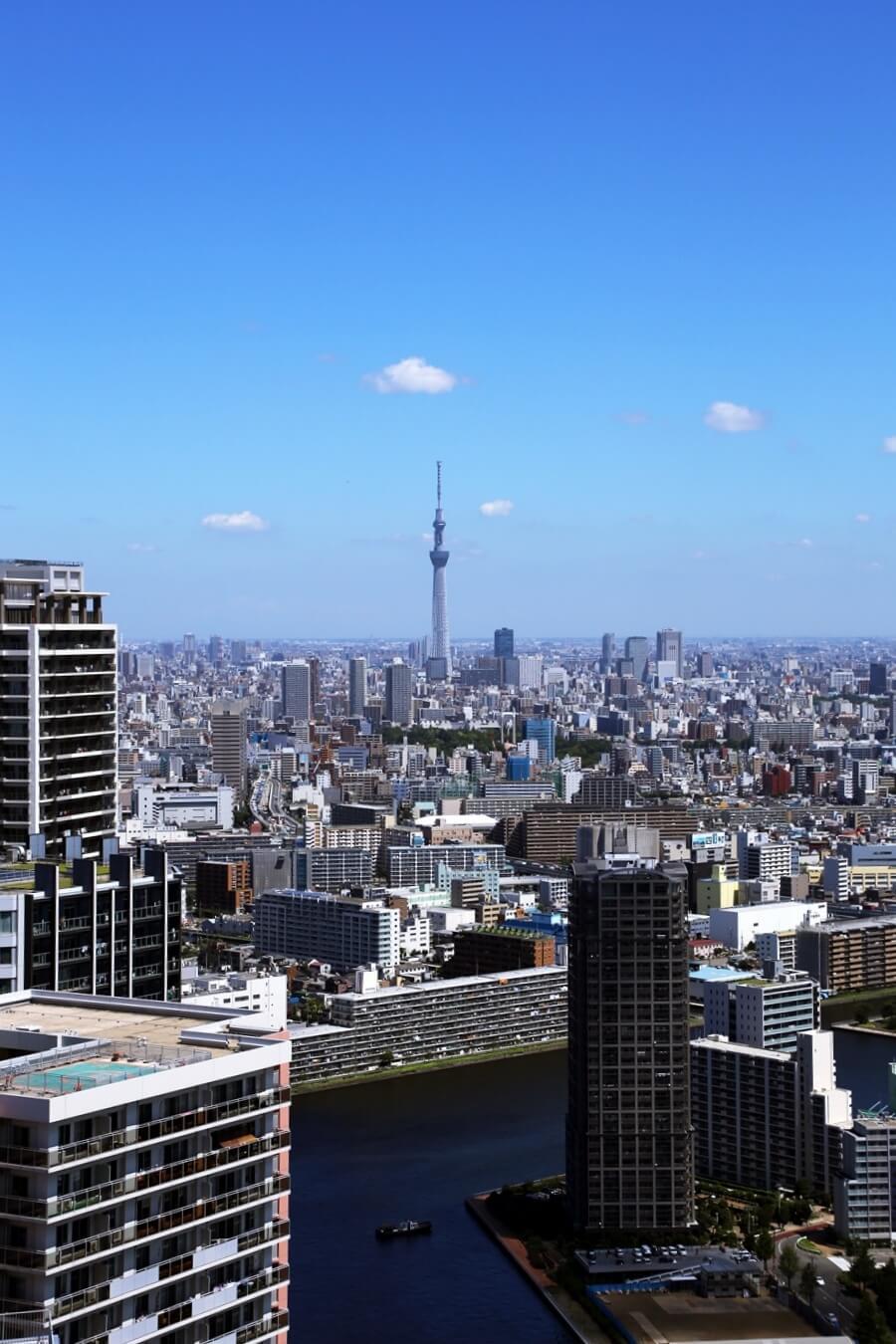 東雲から眺める東京スカイツリー tokyo_skytree (2)