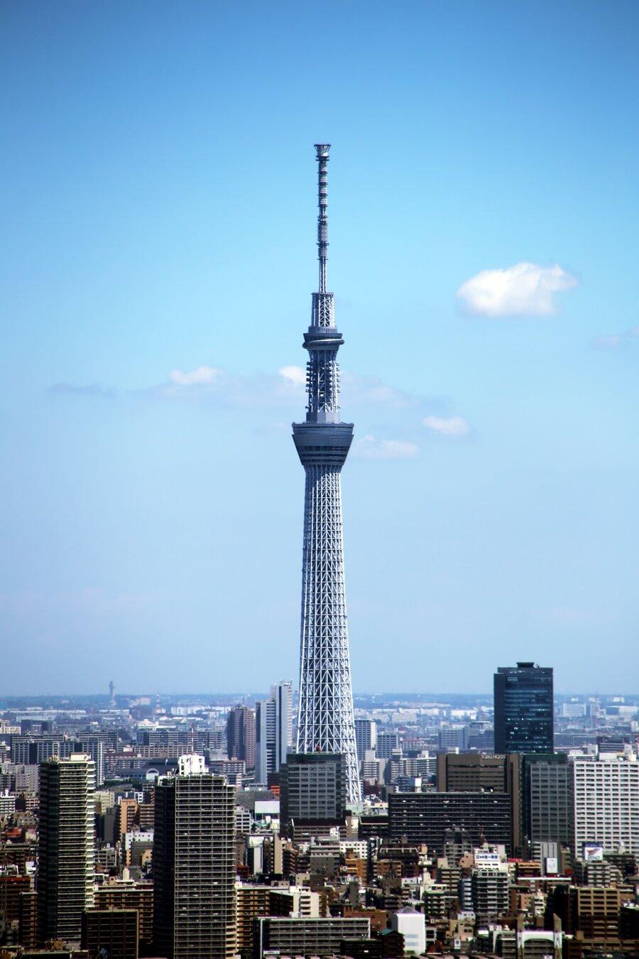 東雲から眺める東京スカイツリー tokyo_skytree (3)