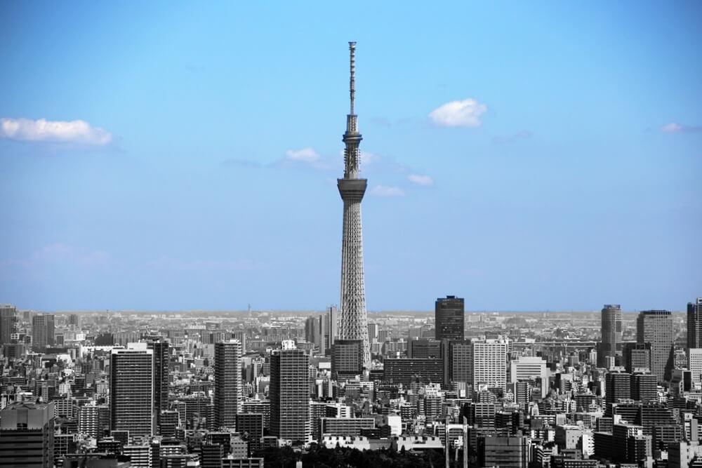 東雲から眺める東京スカイツリー tokyo_skytree