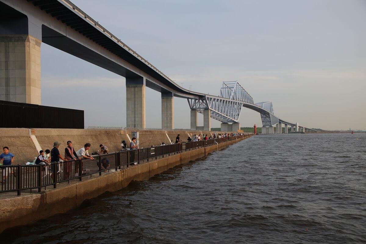 若洲海浜公園 海釣り施設 東京ゲートブリッジ wakasu tokyo gate bridge (2)