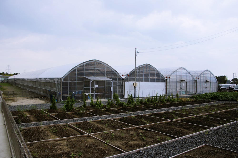 畑っちゃーの 三重県菰野町湯の山 アクアイグニス AQUA x IGNIS (4)