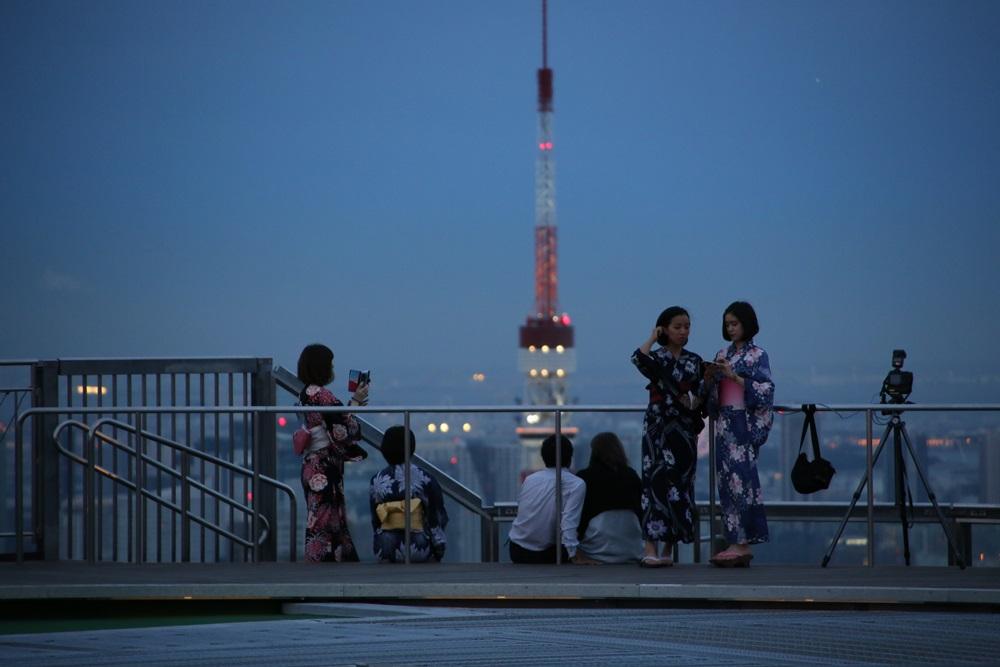 東京タワー 六本木ヒルズスカイデッキから from roppongi hills (9)