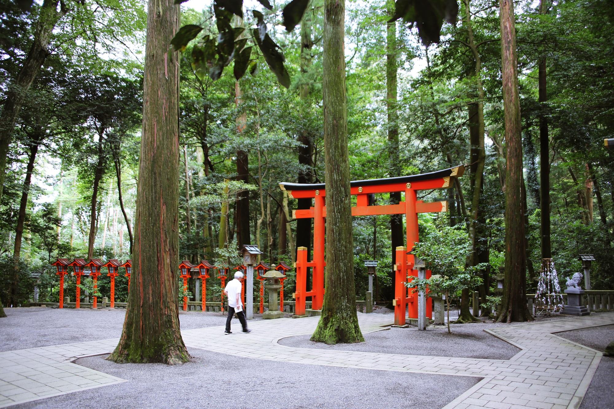 椿大神社 (つばきおおかみやしろ) tsubakiookamiyashiro (10)