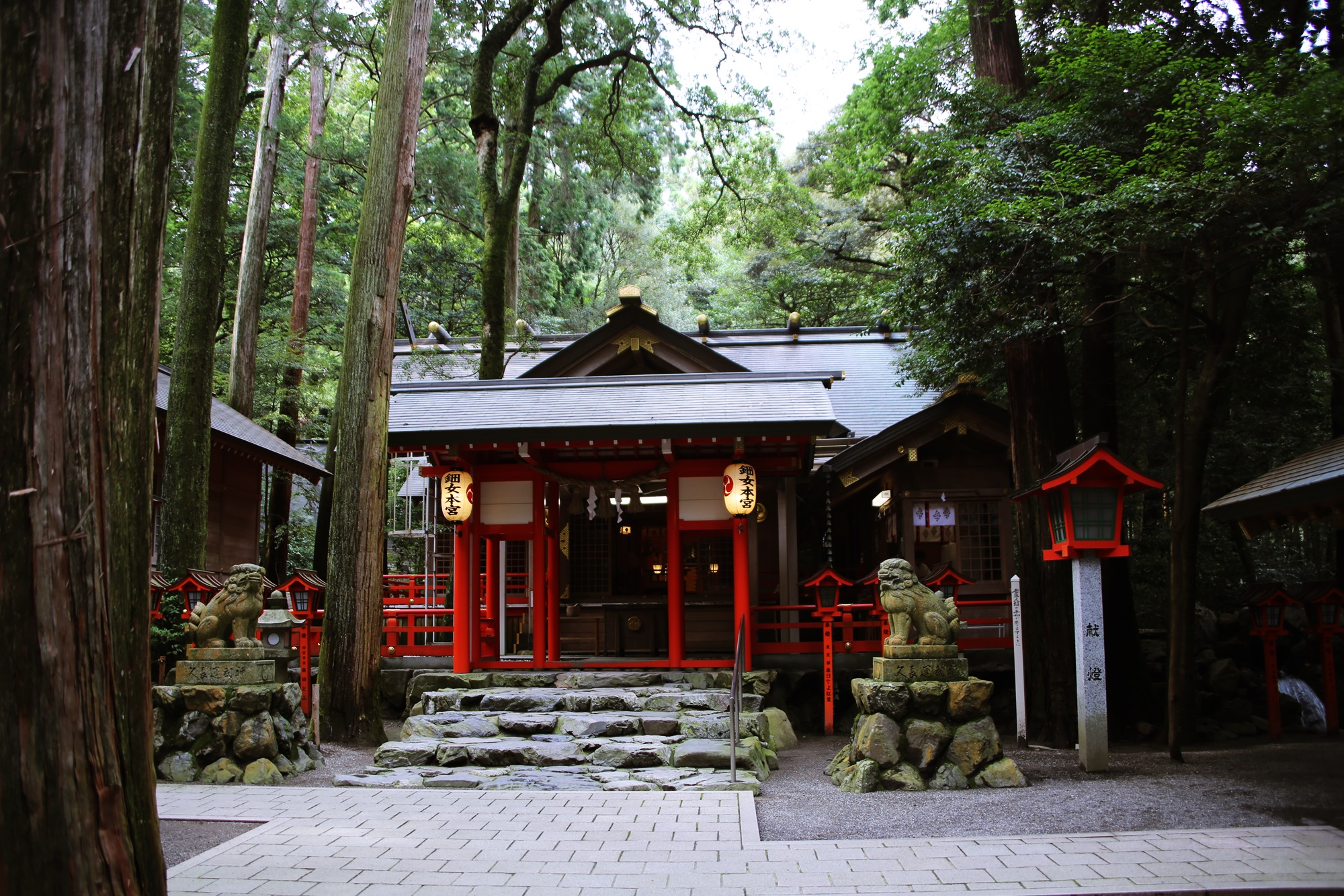 椿大神社 (つばきおおかみやしろ) tsubakiookamiyashiro (11)