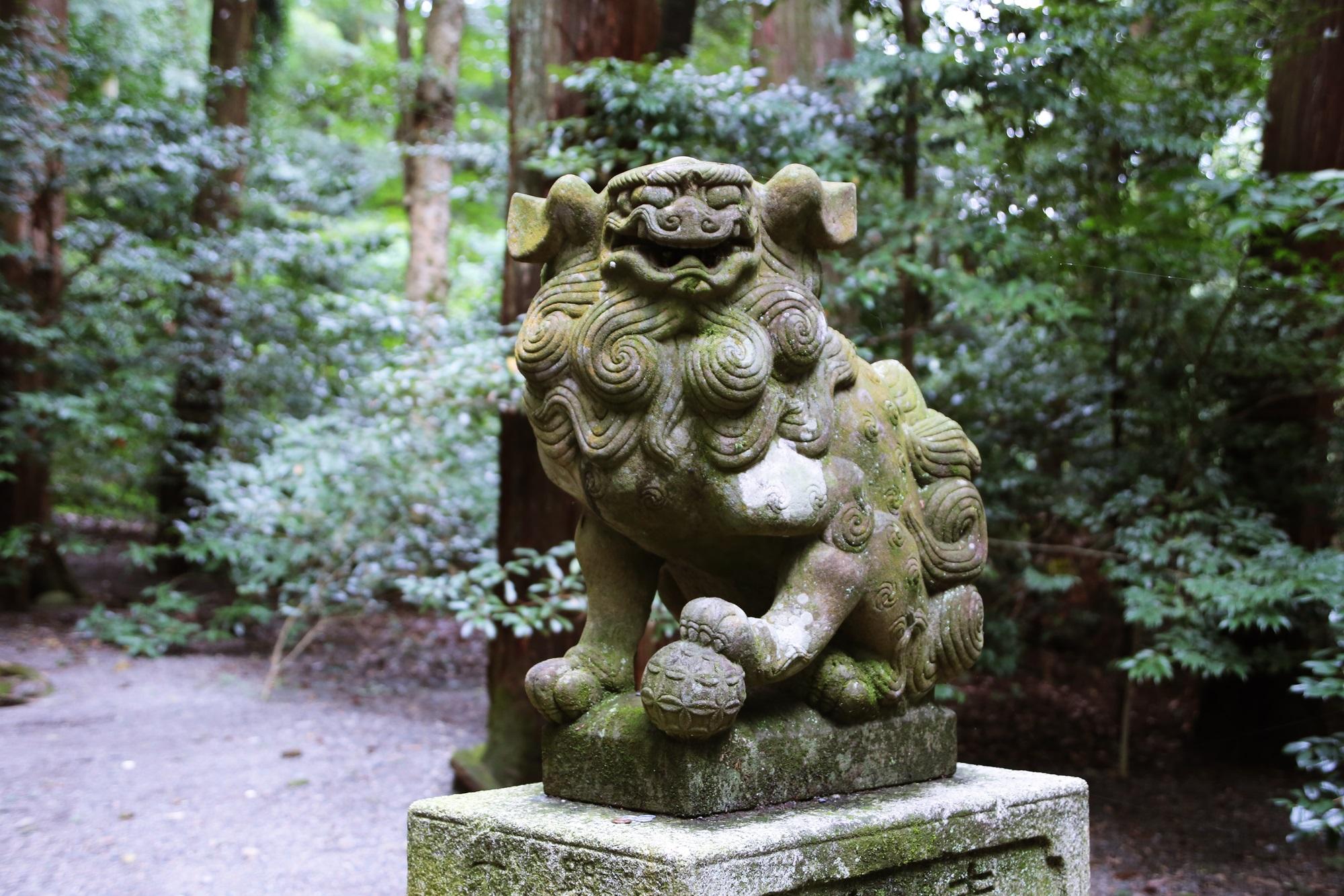 椿大神社 (つばきおおかみやしろ) tsubakiookamiyashiro (4)