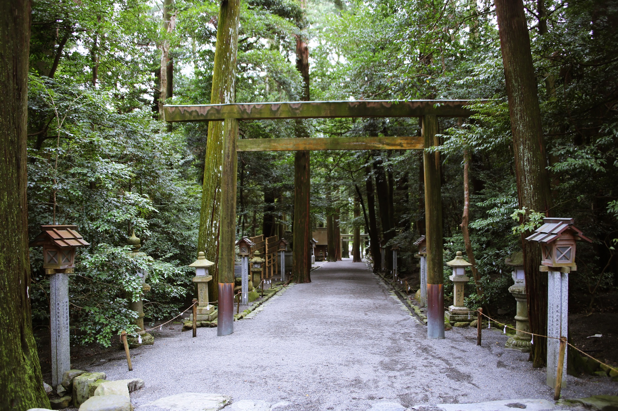椿大神社 (つばきおおかみやしろ) tsubakiookamiyashiro (8)