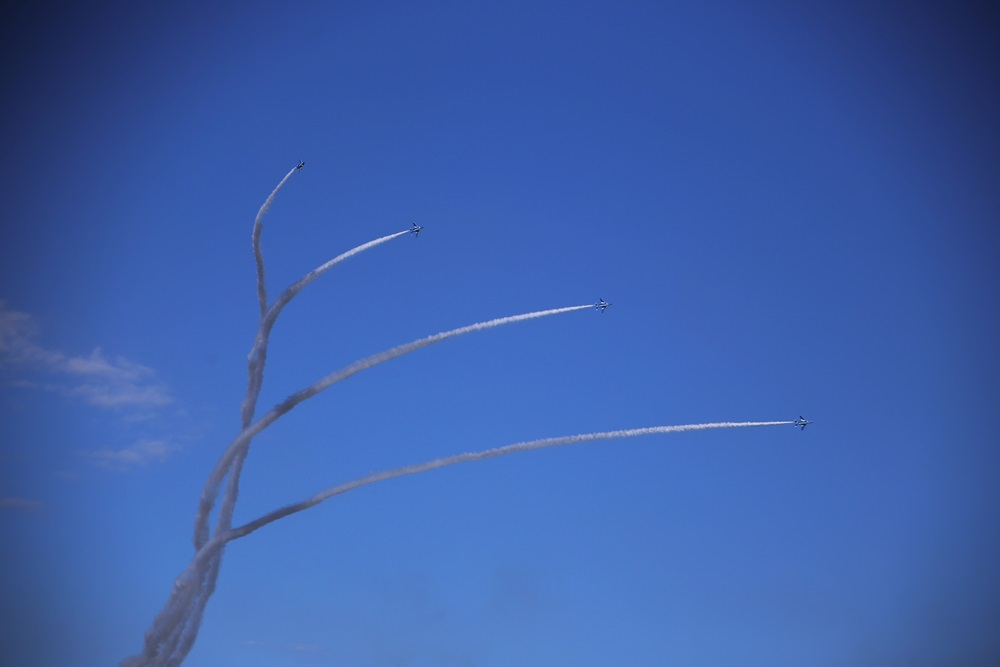 ローリングコンバットピッチ  ブルーインパルス 西武池袋線 稲荷山公園駅 2014年入間基地航空祭 ROLLING COMBAT PITCH Blue Impulse 2014 iruma  fly team (309)