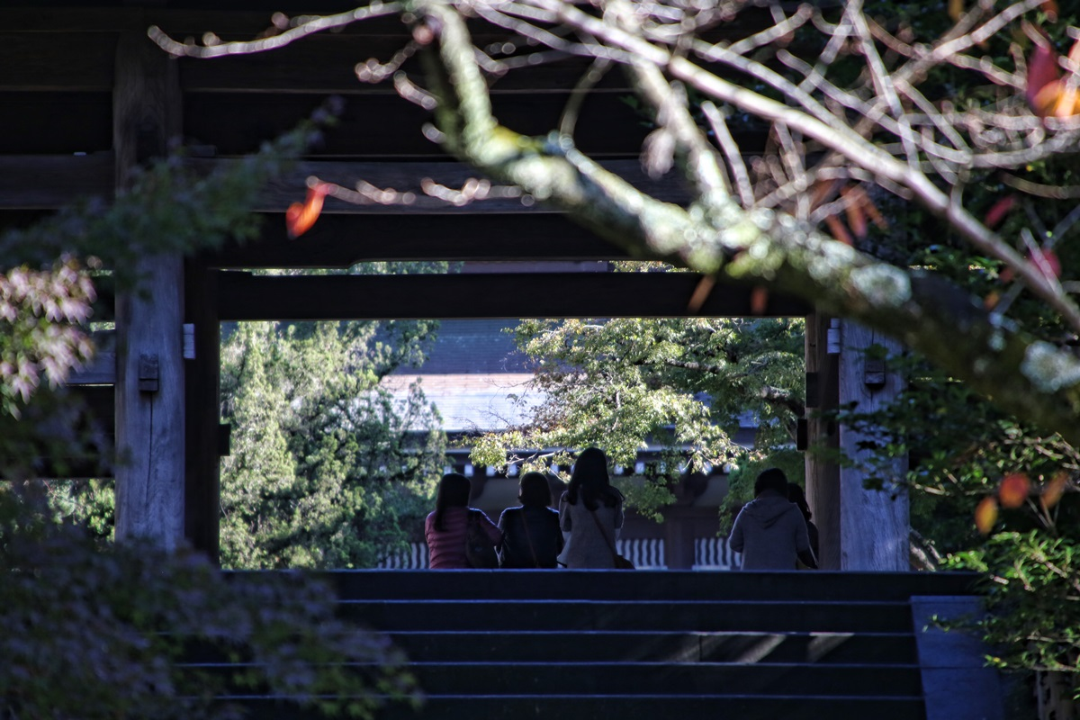 山門 孤独の巡礼 北鎌倉 円覚寺 紅葉散策 kitakamakura_engakuji_koyo (4)